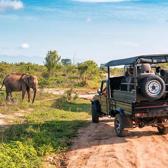 AVENTURE EN AFRIQUE