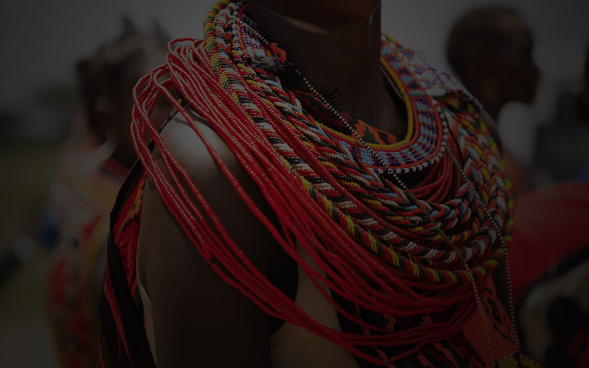 Afrique le berceau de l humanite